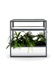 Vitrine com Floreira + plantas