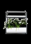 Vitrine com Floreira + plantas